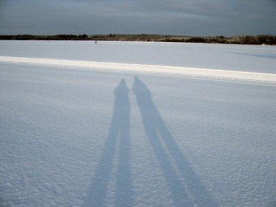 shadows at midday